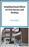 Neighbourhood effects on firm success and strategy